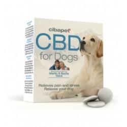 pastille cbd chiens